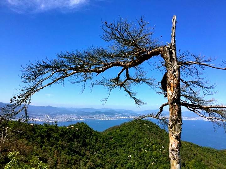 Itsukushima6