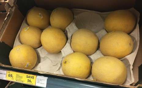 The price of melons in England (£0.69 each)